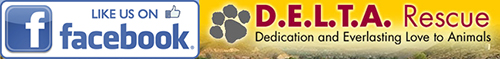 Like Delta Rescue on Facebook