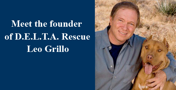 Meet Leo Grillo - Founder of D.E.L.T.A. Rescue