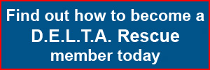Become a D.E.L.T.A. Rescue member today - Click here for more information