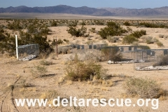 Desert rescue effort on secret military base.