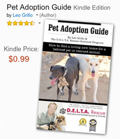 Pet adoption guide
