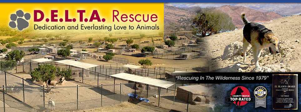 DELTA Rescue Care for Life Animal Sanctuary