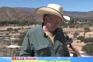 Delta Rescue Animal Shelter